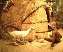 Habitatge tradicional khoikhoi, de Roddy Bray