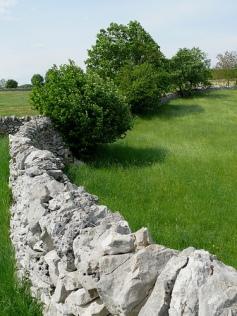 """Stone wall"", de Dyna Mosquito"