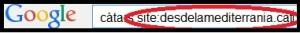 Paràmetre site cerca amb Google