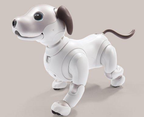 El nou gos robòtic Aibo de Sony