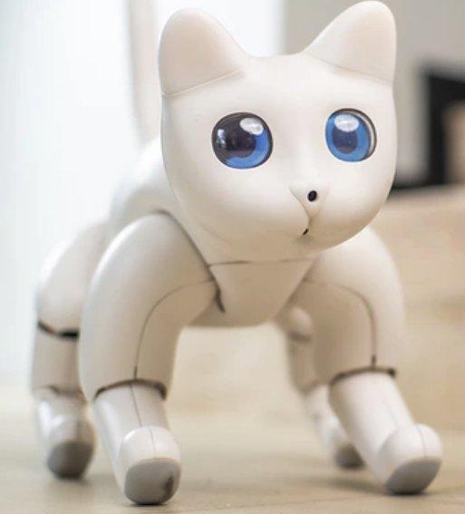 MarsCat, el gat robòtic